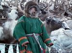 v-adeo-russie-nenets-2017